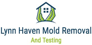 Lynn Haven Mold Removal & Testing